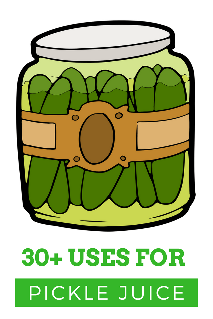 30+ Ways To Use Up Extra Pickle Juice