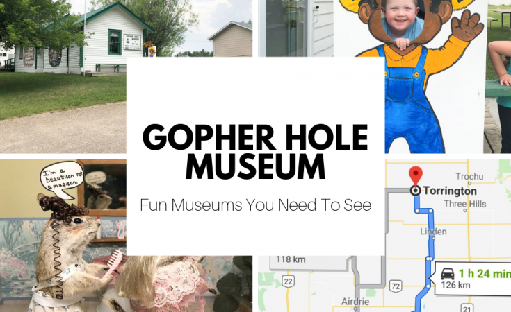 Fun Museums